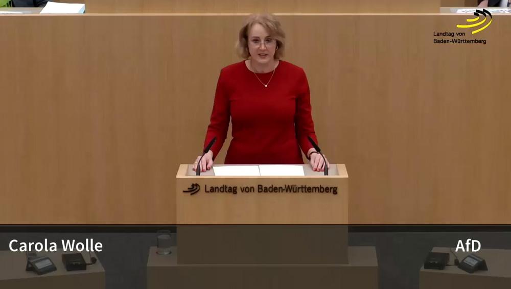 Landtagsrede zu Chancengleichheit, Gender, Bildung und Steuerverschwendung
