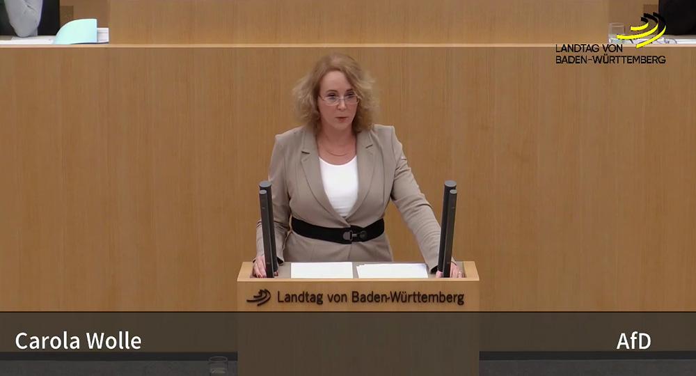 Landtagsrede zum Staatshaushaltsplan 18/19 zu Wirtschaft, Arbeit und Wohnungsbau