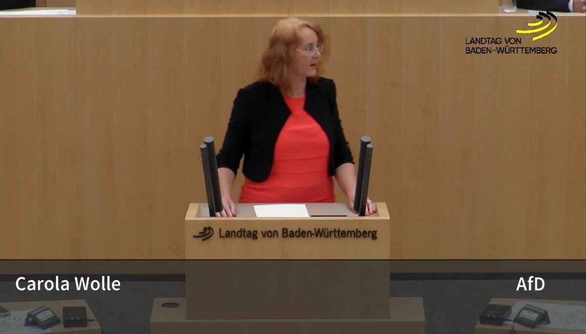 Carola Wolle: von Steuergerechtigkeit sind wir weit entfernt!