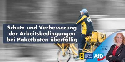 Schutz und Verbesserung der Arbeitsbedingungen bei Paketboten längst überfällig