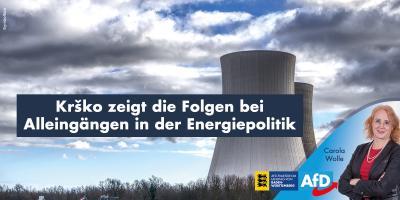 Carola Wolle: Kernkraftwerk Krško zeigt die Folgen bei Alleingängen in der Energiepolitik
