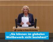 Carola Wolle zum Bürokratieabbau am Beispiel des Bildungszeitgesetzes