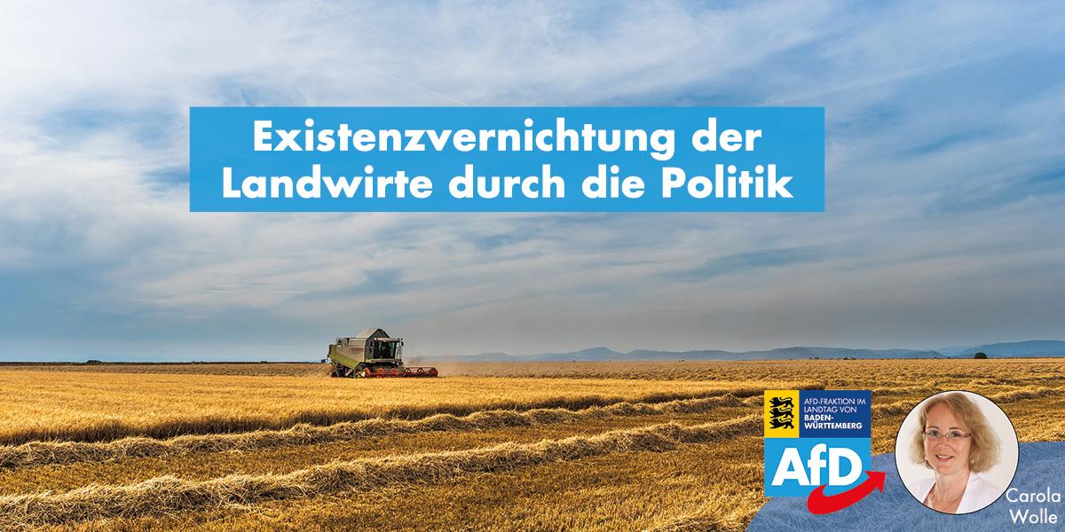 Carola Wolle: Politik betreibt Existenzvernichtung der Landwirte