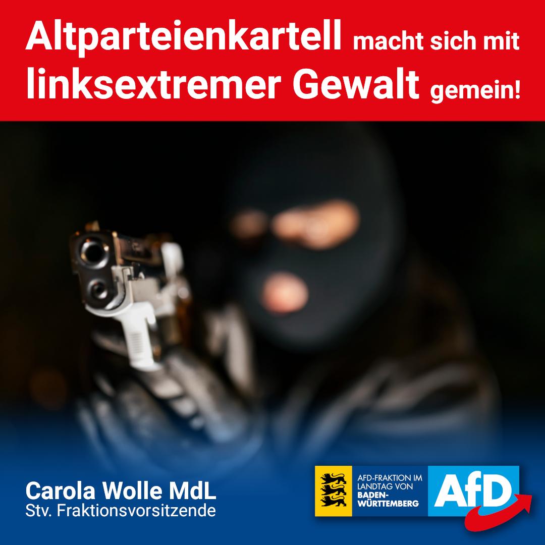 Carola Wolle: Altparteienkartell macht sich mit linksextremer Gewalt gemein