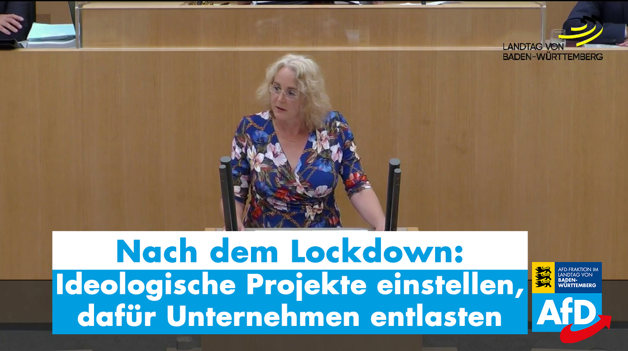 Landtagsrede zu den Problemen der Wirtschaft wegen des Corona-Lockdowns