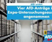 Carola Wolle: Vier AfD-Anträge im Expo-Untersuchungsausschuss angenommen