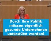 Landtagsrede: Carola Wolle gegen einen intransparenten Beteiligungsfonds
