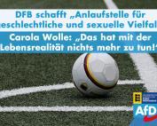 Carola Wolle: Vielfaltsanlaufstelle beim DFB ist überflüssig
