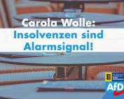 Carola Wolle: Insolvenzen sind Alarmsignal!