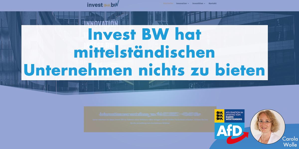 Carola Wolle: Invest BW hat mittelständischen Unternehmen nichts zu bieten