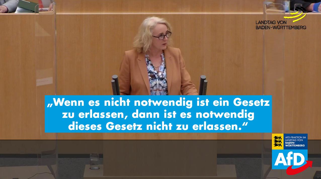 Plenarrede von Carola Wolle zur Änderung des Tariftreue- und Mindestlohngesetzes für öffentliche Aufträge