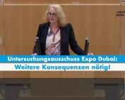 Carola Wolle zum Ende des Untersuchungsausschusses Expo Dubai