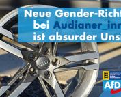 Carola Wolle: Audianer_innen wichtiger als Motor_innen