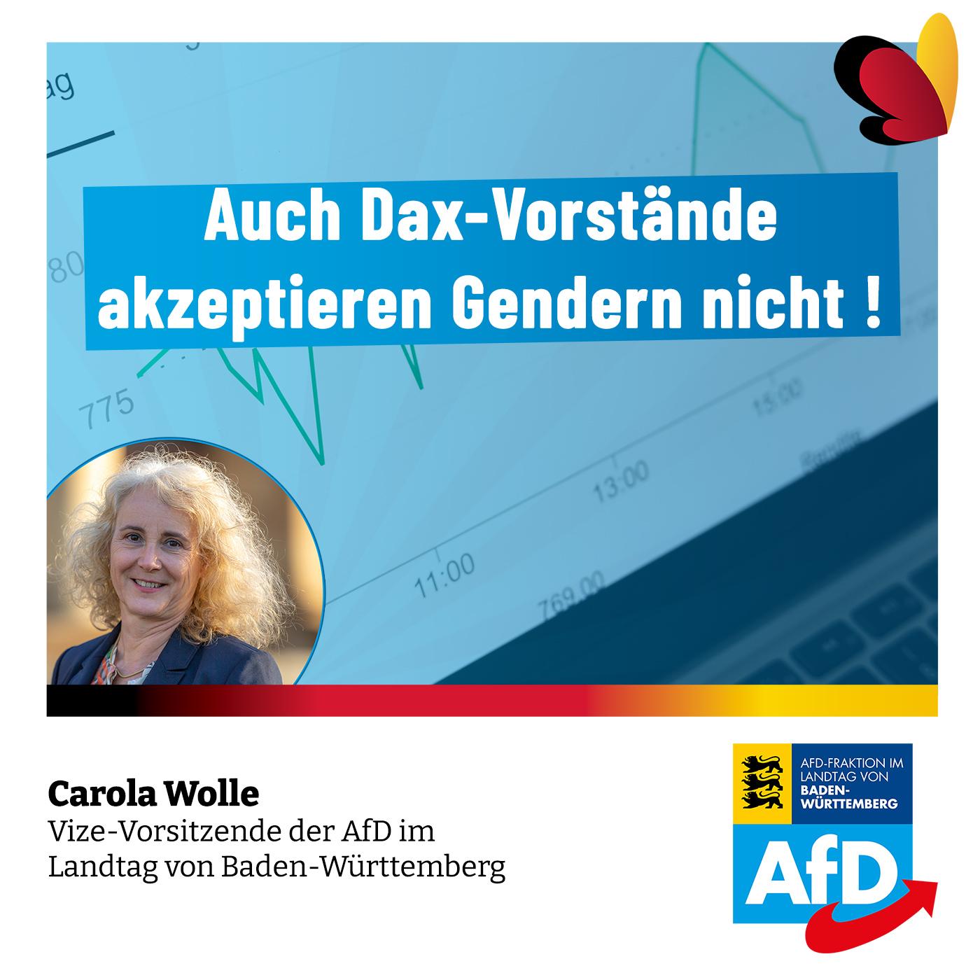 Carola Wolle: Auch Dax-Vorstände akzeptieren Gendern nicht