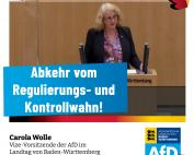 Carola Wolle: Abkehr vom Regulierungs- und Kontrollwahn!