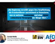 Carola Wolle: Krankenhäuser in massiver wirtschaftlicher Schieflage