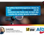 Carola Wolle: Presseagenturen geben elitäre Sprachetablierung zu