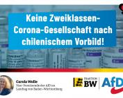 Carola Wolle: keine Zweiklassen-Corona-Gesellschaft nach chilenischem Vorbild