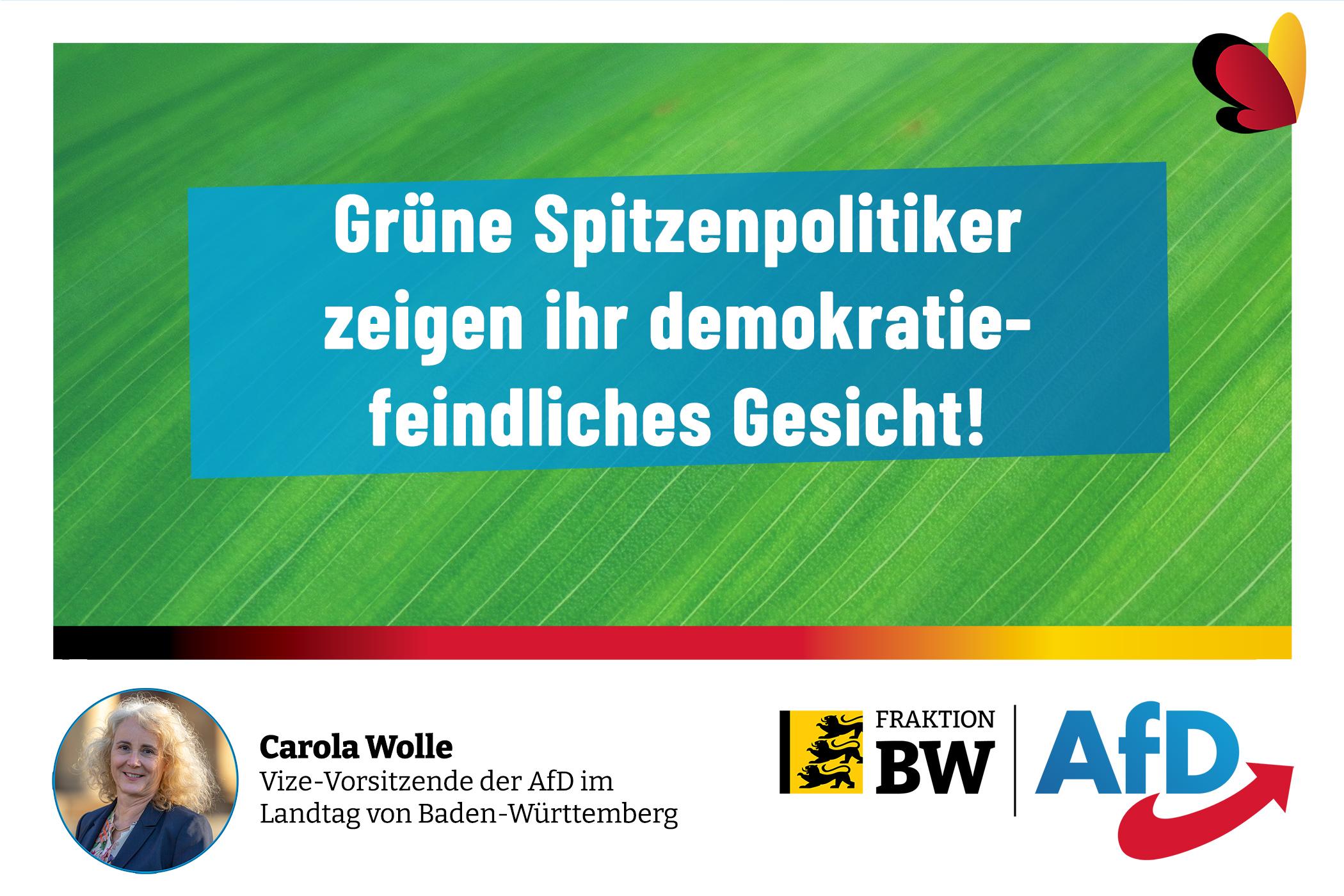 Grüne Spitzenpolitiker zeigen ihr demokratiefeindliches Gesicht!