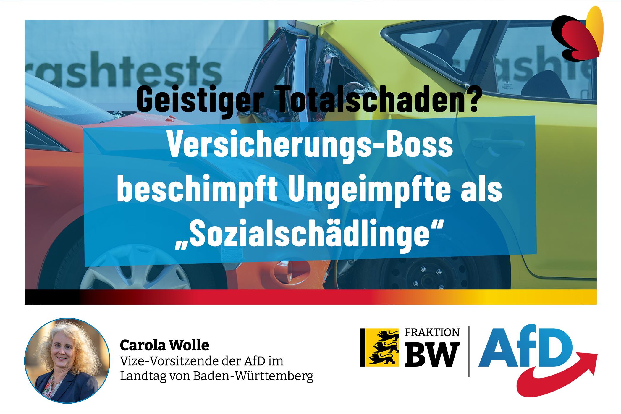 Carola Wolle MdL: R+V-Boss voll auf Regierungslinie