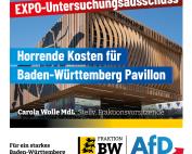 Carola Wolle: EXPO in Dubai zu schade für parteitaktische Spiele