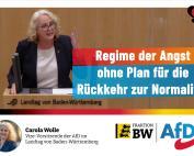 Carola Wolle: Beenden Sie die Geiselnahme der Bürger dieses Landes!
